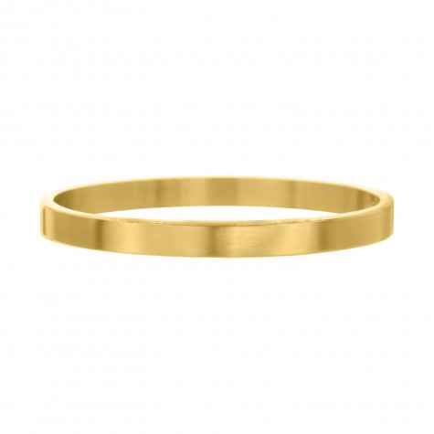 Musthave brushed Bangle in de kleur goud van FINASTE