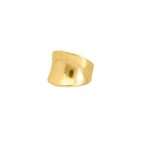 Zegelring big goud kleurig