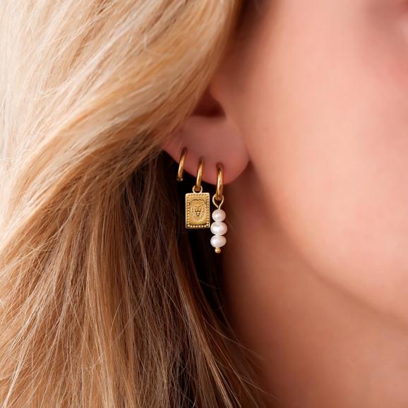 Gouden earparty gemixt