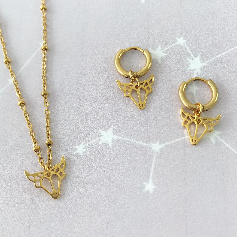 Gouden sterrenbeeld ketting en oorbellen op plaatje met stier
