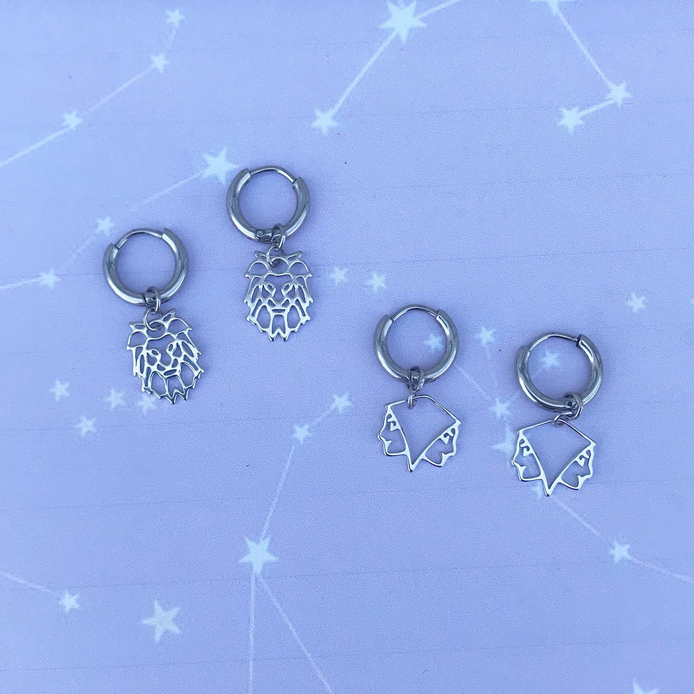Zilveren tweeling oorbellen op een plaatje
