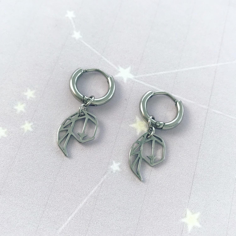Zilveren oorbellen van het sterrenbeeld Maagd
