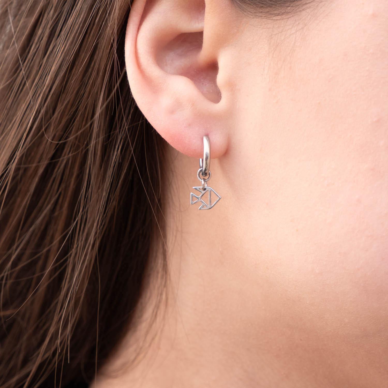 Vissen oorbellen sterrenbeeld in het zilver
